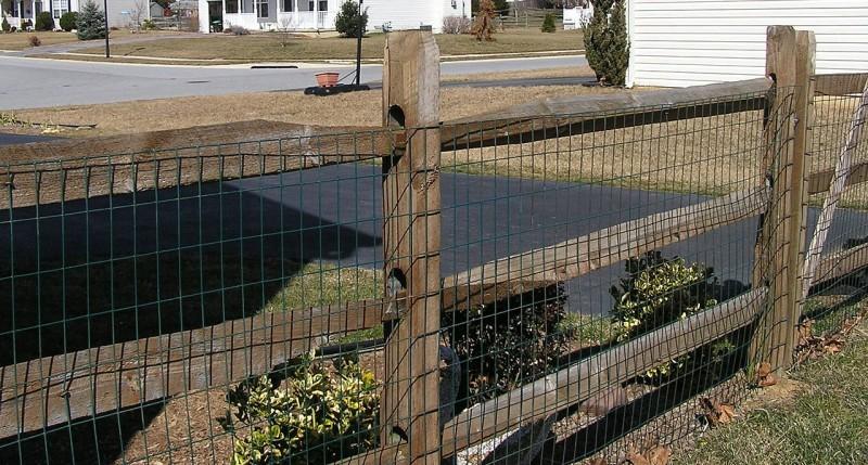 Split Rail Fence With Mesh