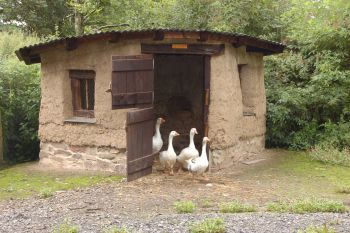 37 free diy duck house coop plans ideas that you can for Duck shelter designs