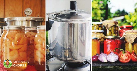 10 Painless Steps to Use a Pressure Canner and Save On Your Groceries