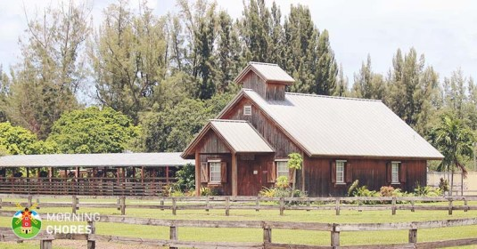 8 Tips You Absolutely Need When Purchasing Your Perfect Homestead