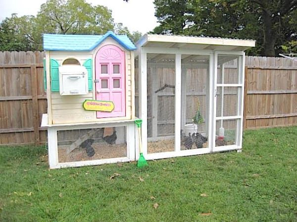 From Playhouse To Hen House