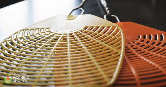 6 Best Fly Swatter Reviews: Fast, Effective Insect Killer Devices