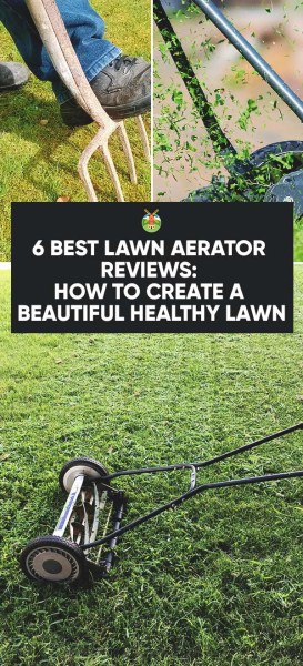 6 Best Lawn Aerator Reviews How To Create A Beautiful