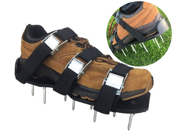 Best Aerator Shoes