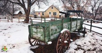 10 Important Steps to Preparing Your Homestead for Winter