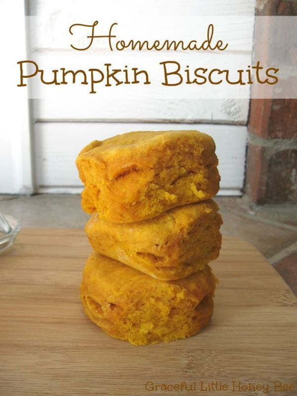 Homemade-Pumpkin-Biscuits