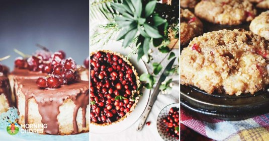 30 Delicious Cranberry Recipes to Sweeten Your Festive Season