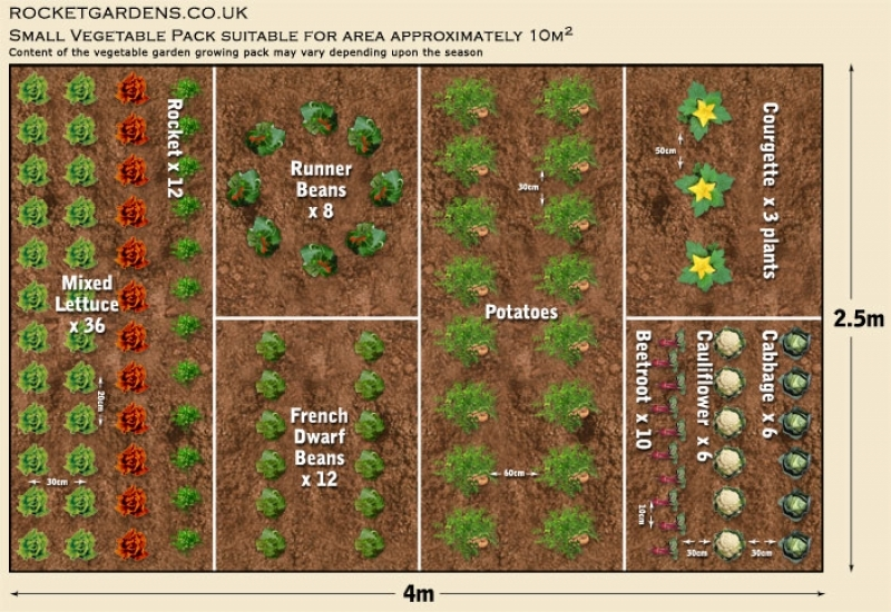 19 Vegetable Garden Plans & Layout Ideas That Will Inspire You on Backyard Layout Planner id=57688