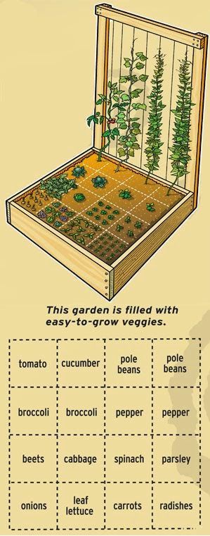 19 Vegetable Garden Plans & Layout Ideas That Will Inspire You on Backyard Layout Planner  id=79787