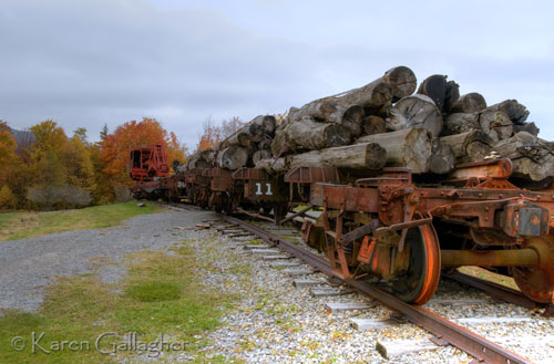Tower Skidder and Flatbeds bearing Logs