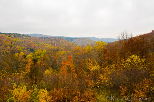 View-from-Bald-Knob-wmo