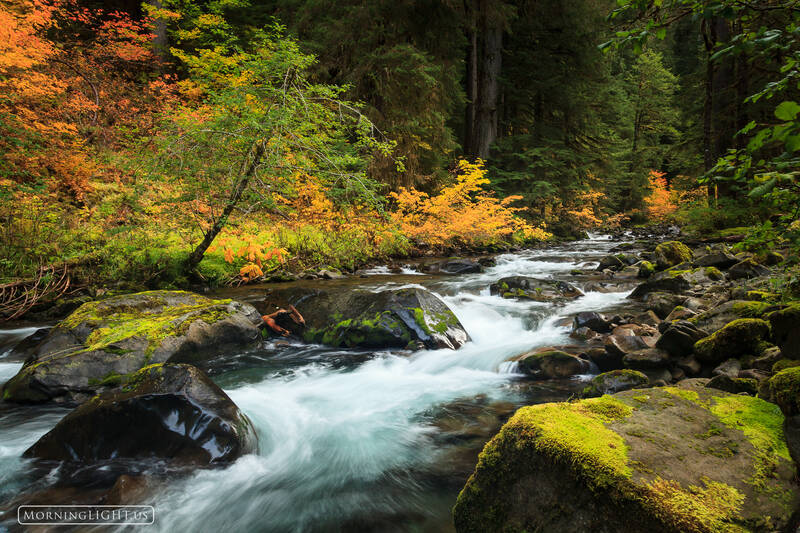Fall Color Washington State Parks