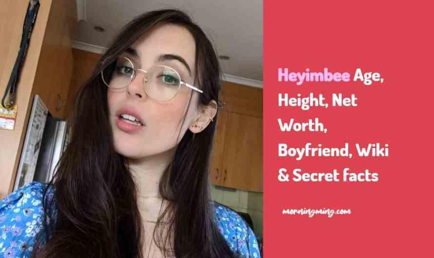 Heyimbee Age, Height, Net Worth, Boyfriend, Wiki & Secret facts