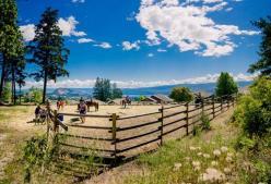 Scenic horse day pano