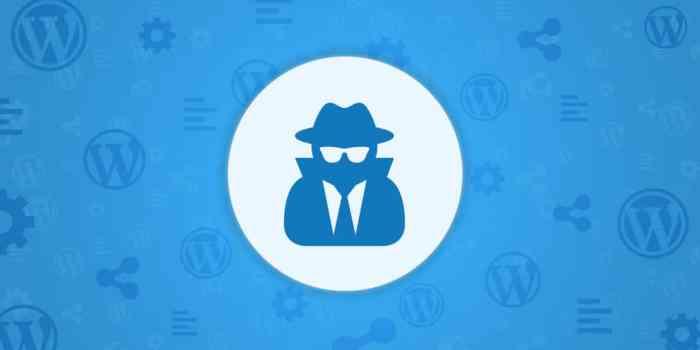 Sitios web de WordPress atacados por complementos de terceros, ¡asegure su sitio WP ahora!