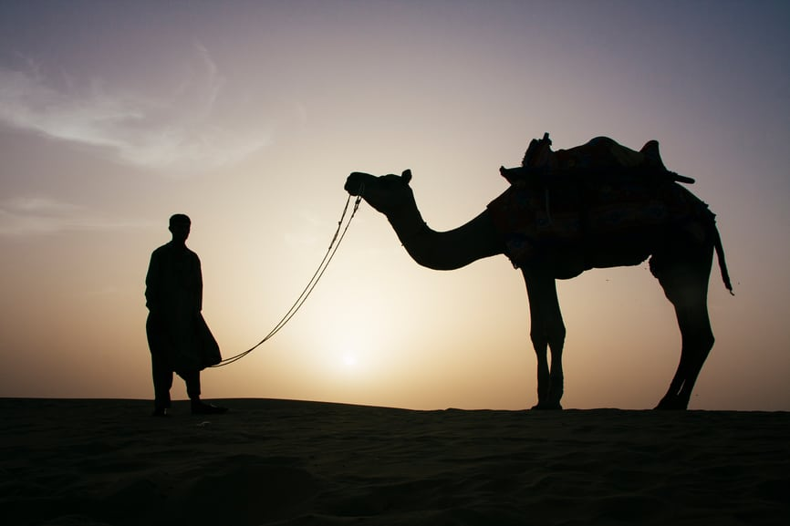 trust-God-tie-Camel-desert