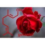 香料の化学:香りの構造~トップノート・ミドルノート・ベースノート~