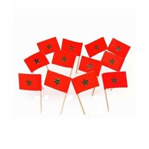 Tandenstoker met de marokkaanse vlag