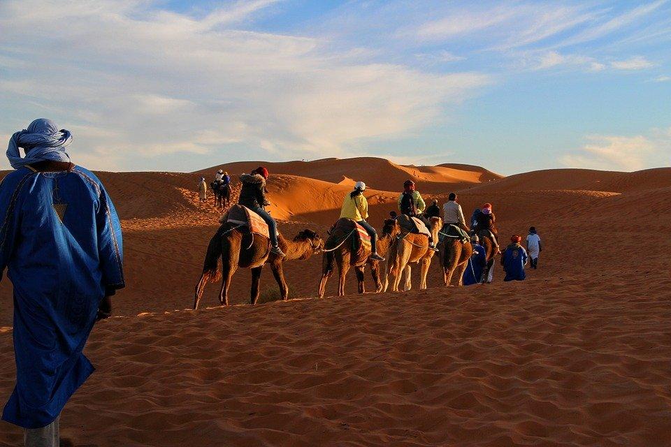desert camel trekking merzouga