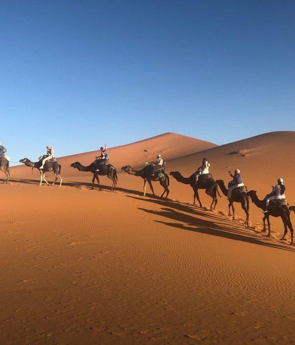 Morocco Tours Agency Camel Trekking merzouga