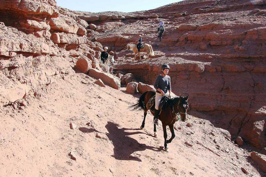 Horse Trekking in Morocco