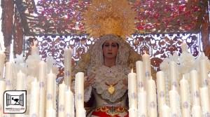 COFRADE. Cultos a María Stma. de la Paz. Del 19 al 26 de octubre @ Morón de la Frontera