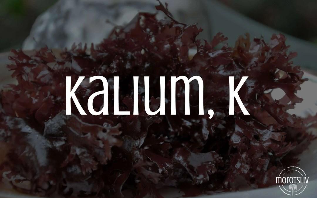 Kalium, K