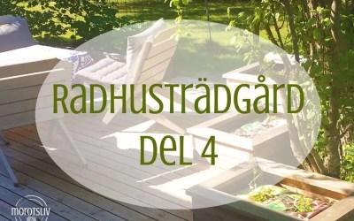 Radhusträdgård del 4 – Uppföljning ett år senare