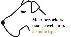 Meer bezoekers gratis naar je webshop 5 tips
