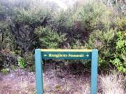 Rangitoto Summit, Auckland