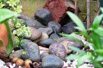 Stones in Northampton