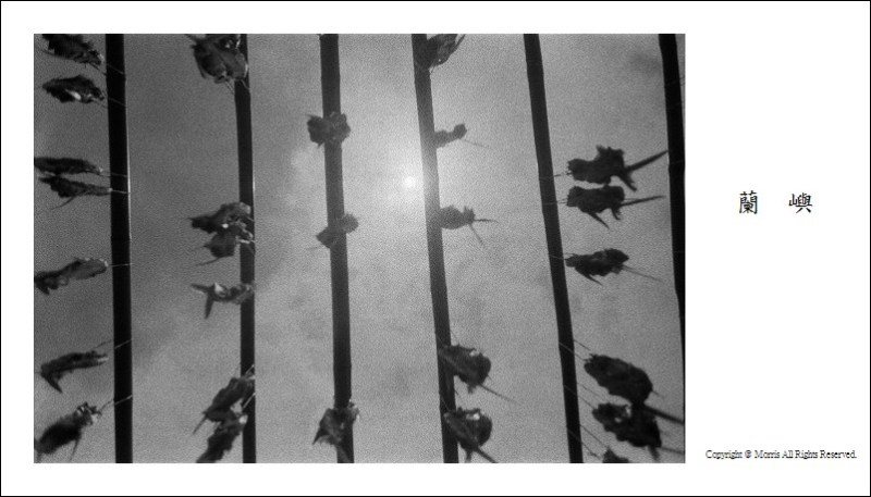黑白記憶 (4)
