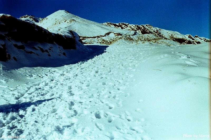 合歡山冬雪 (38)