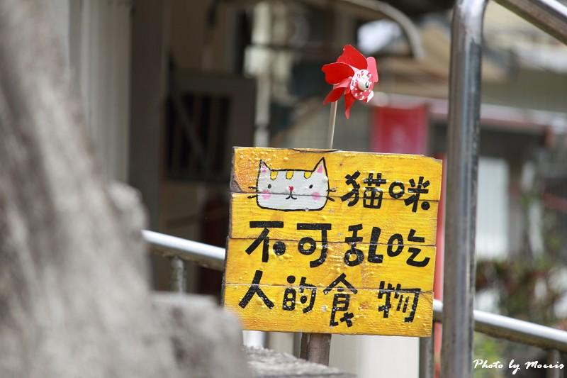 散步猴硐貓村 (08)