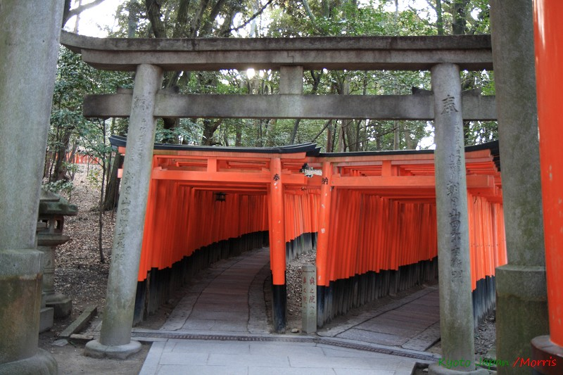 伏見稻荷神社 (5)