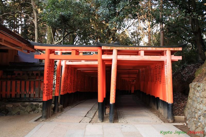 伏見稻荷神社 (9)