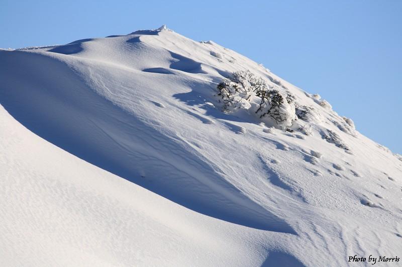 合歡山冬雪終曲 (36)