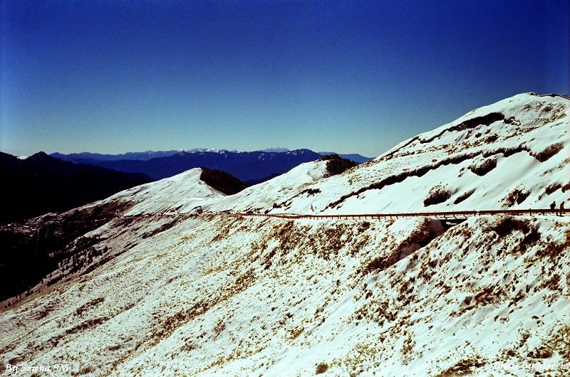 合歡山冬雪 (10)