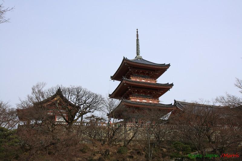 清水寺 (64)