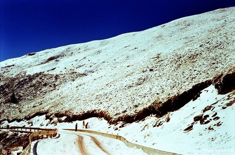 合歡山冬雪 (3)