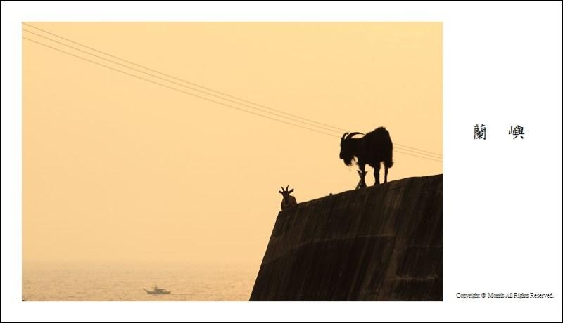 山羊的國度 (16)