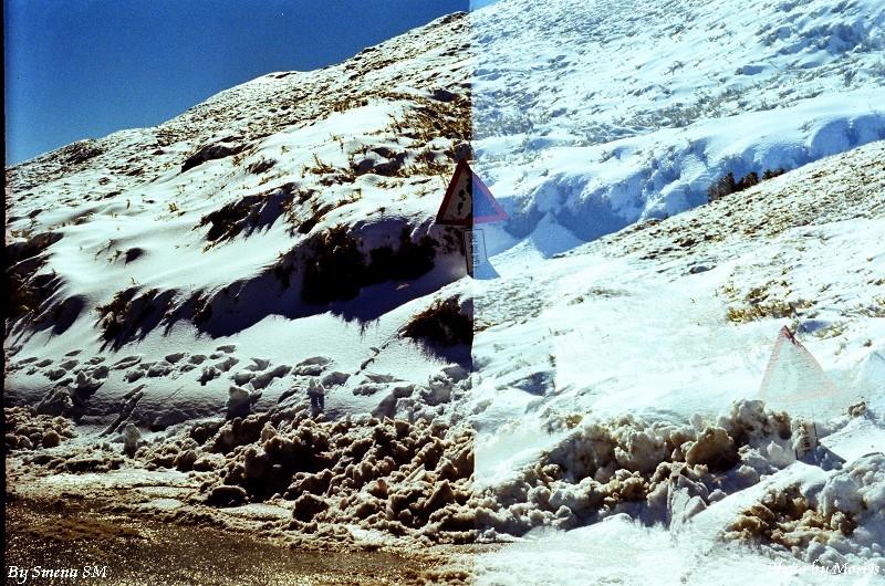 合歡山冬雪 (17)