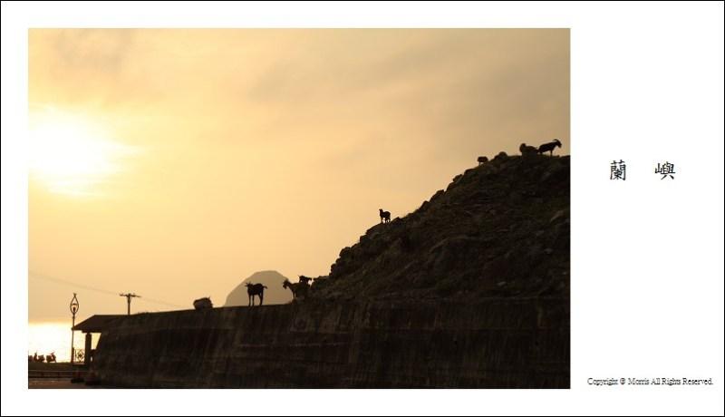 山羊的國度 (20)