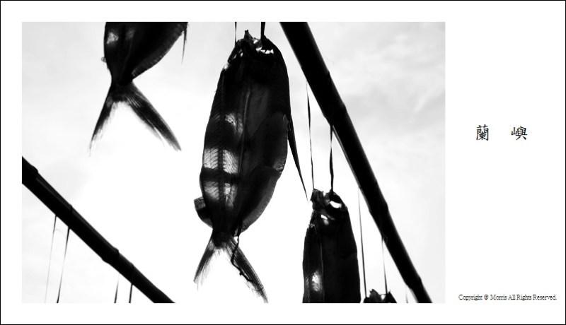 飛魚季 (22)
