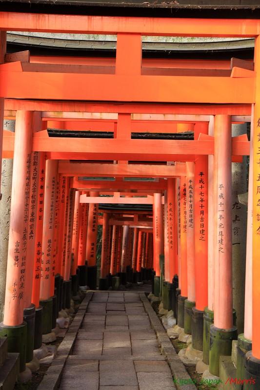 伏見稻荷神社 (49)