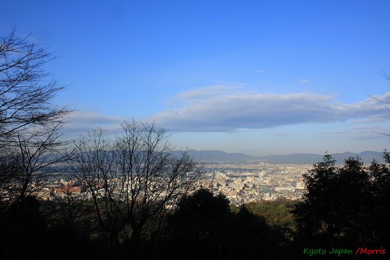 伏見稻荷神社 (31)