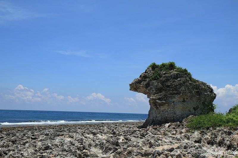 厚石群礁 (16)