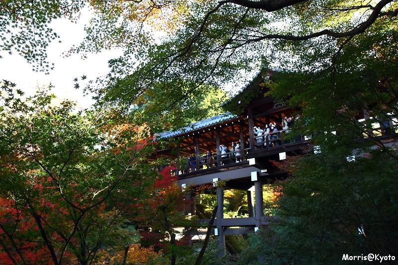 東福寺 (29)