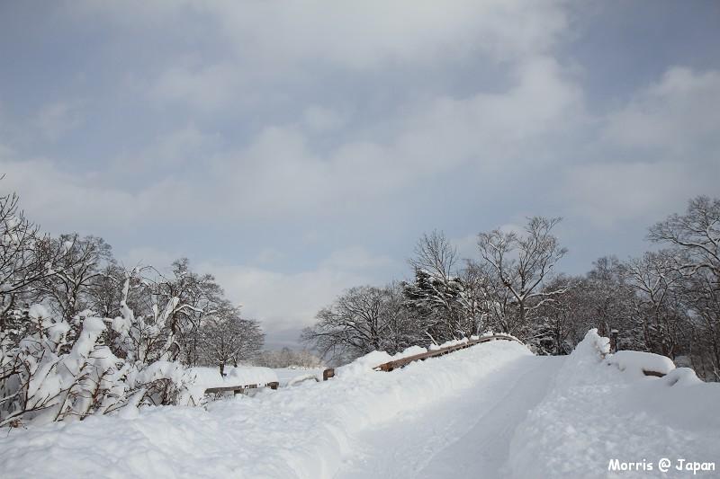 大沼公園 (5)