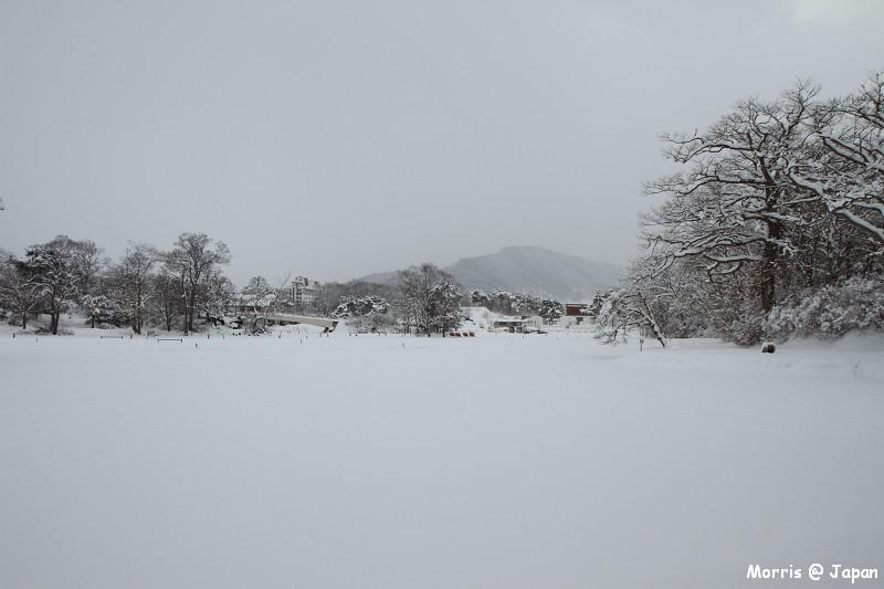 大沼公園 (40)